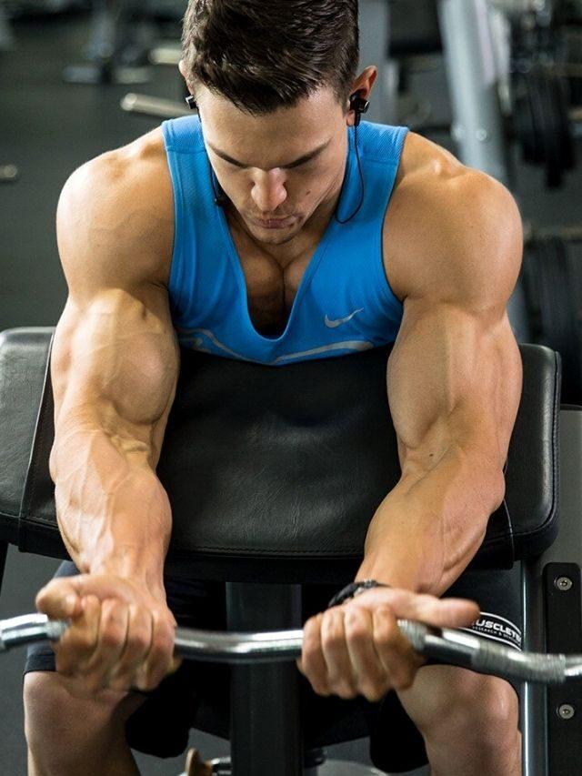 Bíceps:  o treino para  um muque  de respeito